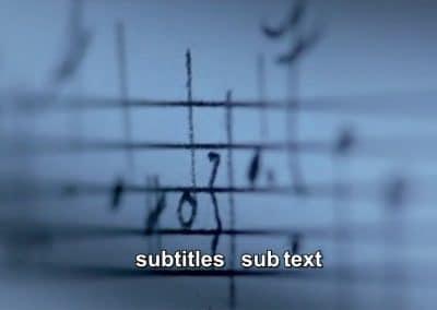 Subtitle/Subtext